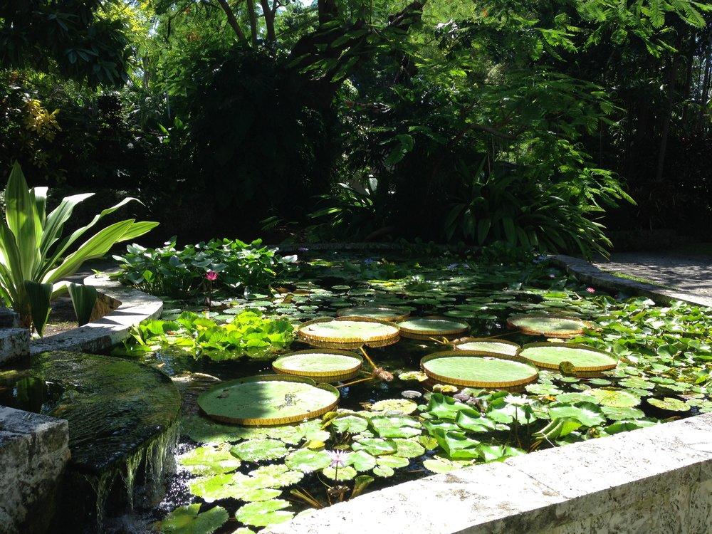 Beautiful water gardens at the Kampong