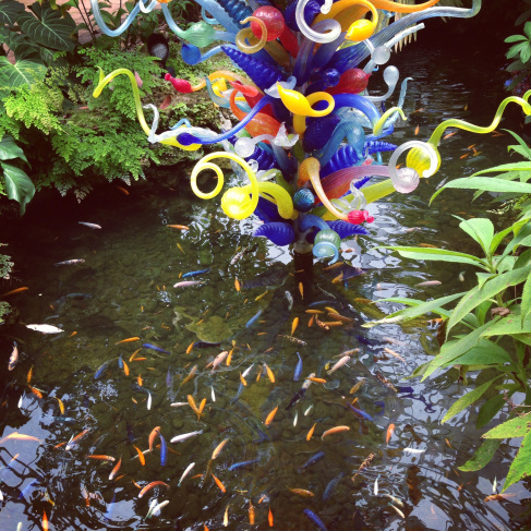 Chihuly glass with matching fish in the rare plant conservatory