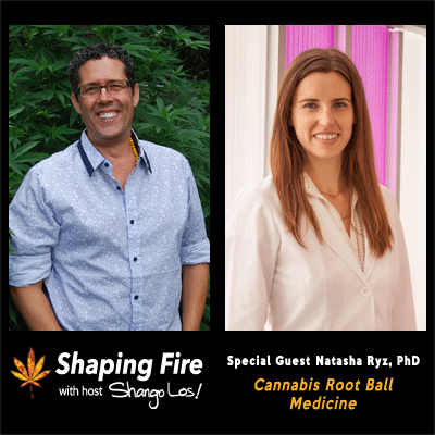 Episode-26---Cannabis-Root-Ball-Medicine-with-guest-Natasha-Ryz,-PhD.png