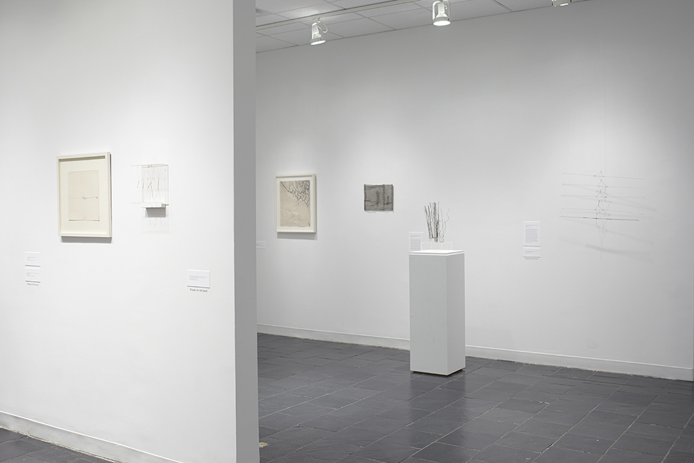 3_Installation view_GG_HCAG_2014.jpg