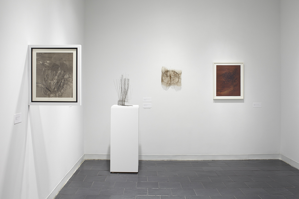 4_Installation view_GG_HCAG_2014.jpg