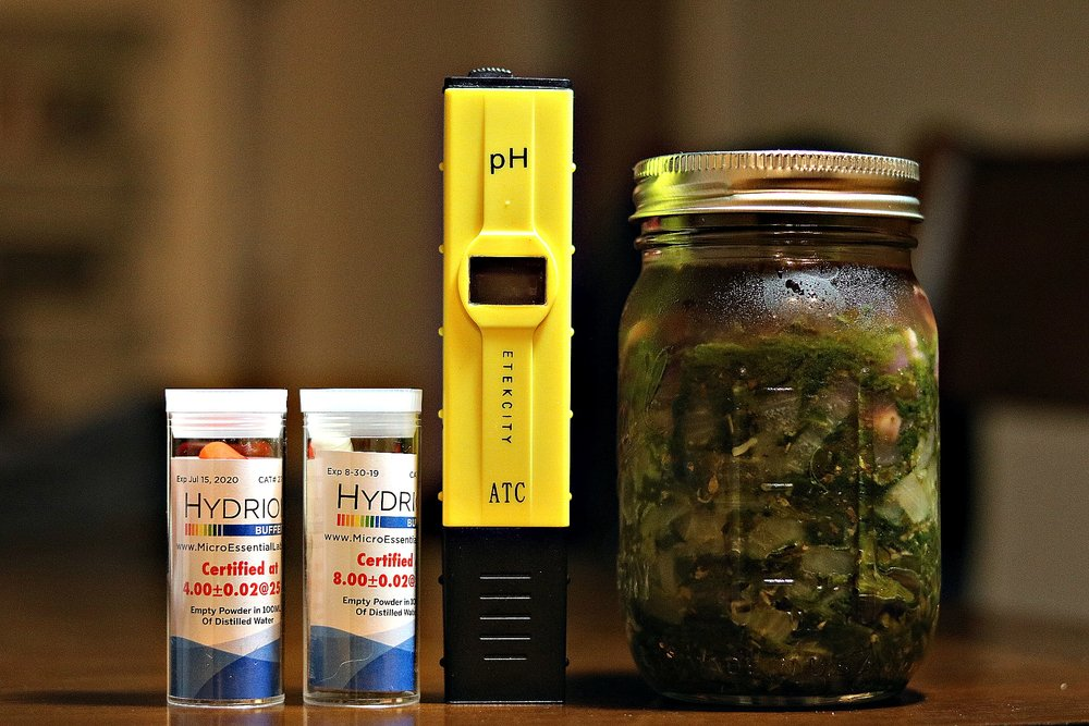 The buffer powder and a pH meter I use at home to test acidity levels in fermented vegetables