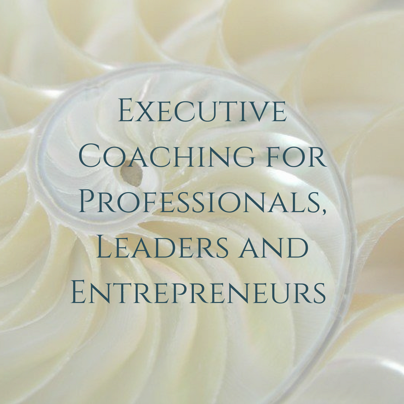 Executive Coaching for Professionals, Leaders and Entrepreneurs.png