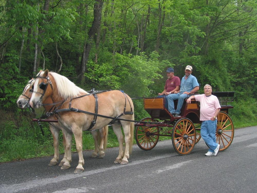horsesnboys.jpg