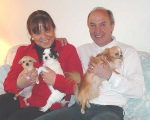 Leticia & Rogelio Herrera Echauri  Mexico City, Mexico  Congratulations and thank you to Leticia and Rogelio for visiting Hallmark Farm/Kennel and purchasing 2 lovely show quality Chihuahuas, one long coat and one smooth coat. The Chihuahuas will be competing in shows in Costa Rica, Guatemala and of course in Mexico and in the United States. Thank you again for giving these opportunities to Hallmark Farm/Kennel Chihuahuas. We enjoyed sharing the Hallmark Farm experience with you folks and now look forward to our continued friendship.