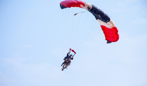 Parachuting dogs — yes, we actually cover this in the episode.