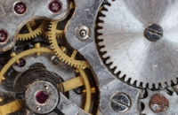 macro-focus-cogwheel-gear-159275.jpeg