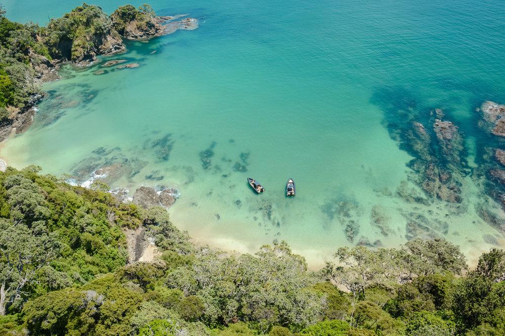 MARINE - Auckland Marine Photography