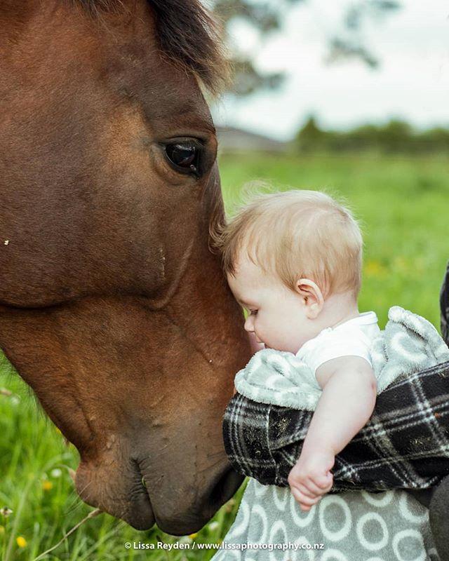 Caption this... . . . #babiesofinstagram #portraitphotography #horsesofinstagram #horseandbaby #nzbaby #babyphotography #aucklandphotographer #petsandbabies #nzhp
