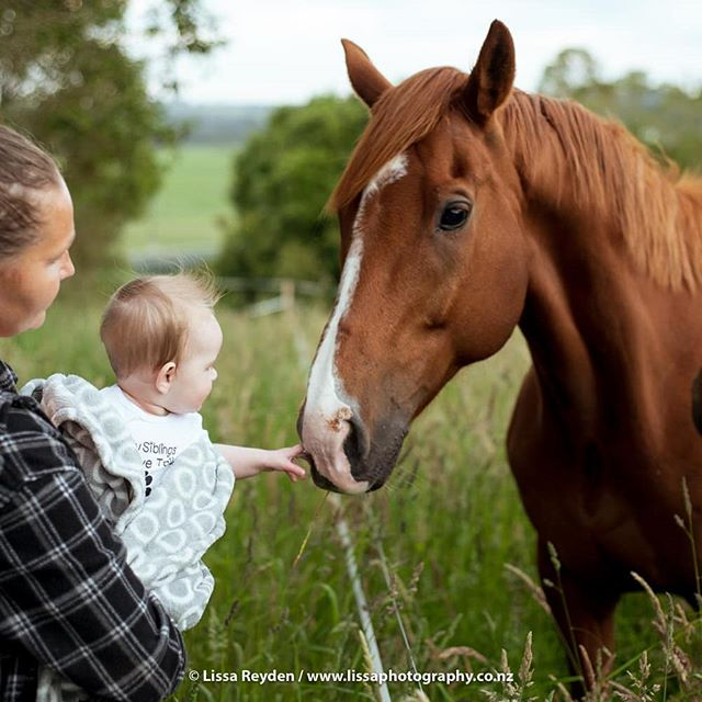 Friend! . . . #babiesofinstagram #portraitphotography #horsesofinstagram #horseandbaby #nzbaby #babyphotography #aucklandphotographer #petsandbabies #nzhp