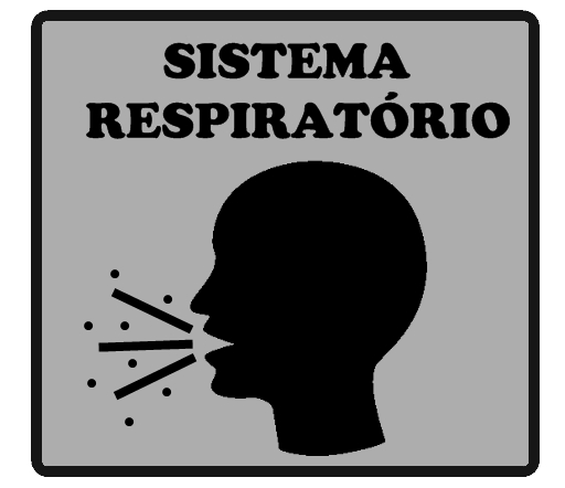 Alergias.jpg