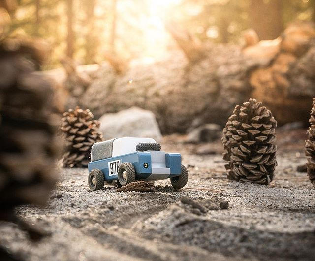 Took @candylabtoys Drifter out to a pinecone forest over in Idyllwild this past weekend. Finally caught the last of the fall colors along the way too 🍂