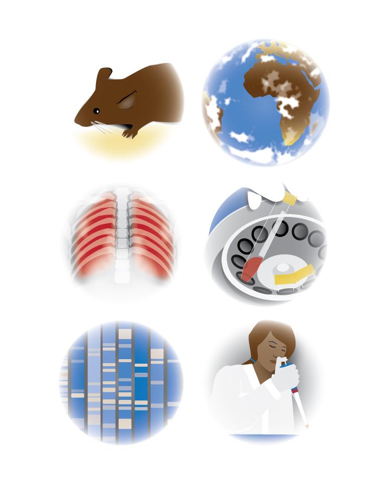 Pneumocystis Services icon set.