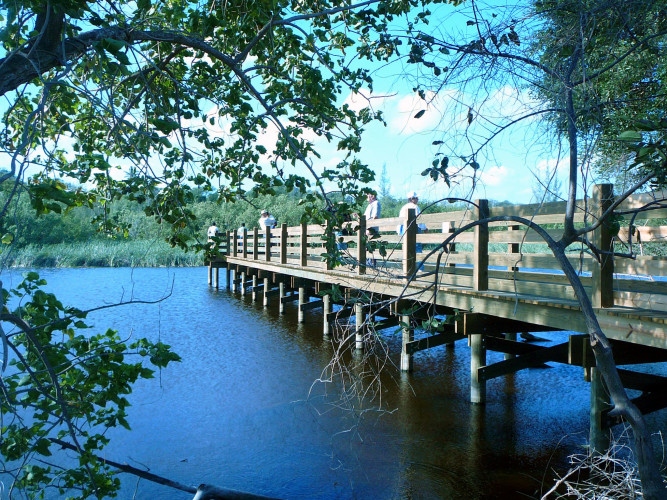 Taking in the ambience of the Nature Preserve. Photo by: (C)Carolyn Wardle