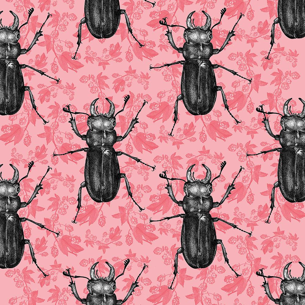 Stag beetle hops sq.jpg