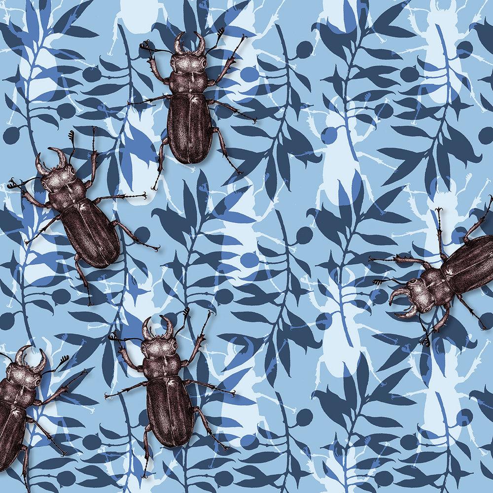 Stag beetle Crawling.jpg