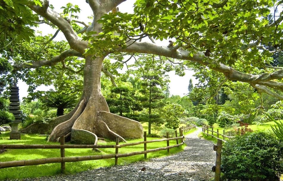 alter Sisulu Botanical Gardens