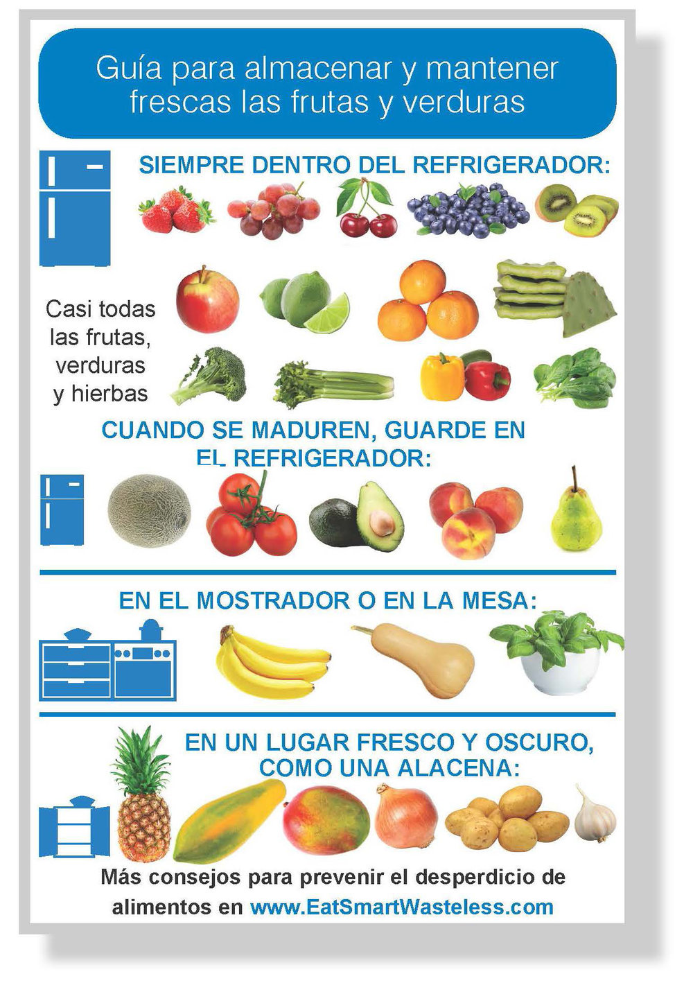 Storage guide magnet_Spanish_thumbnail.jpg