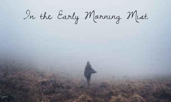 in-the-early-morning-mist