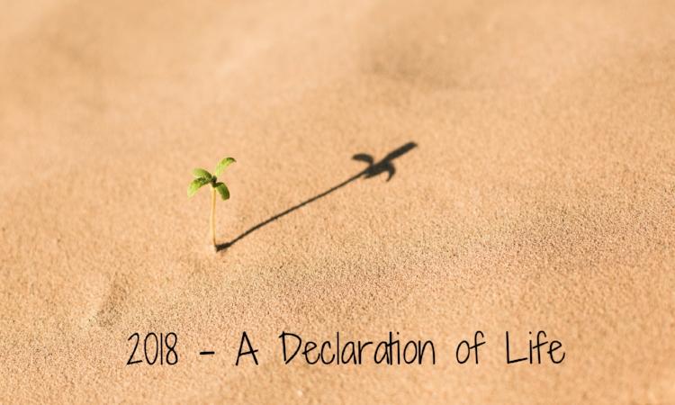 2018 a declaration of life.jpg