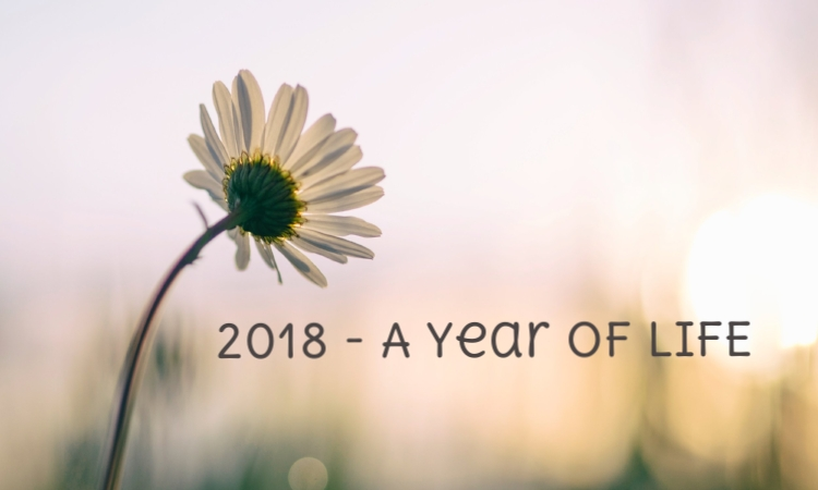 2018 a year of life