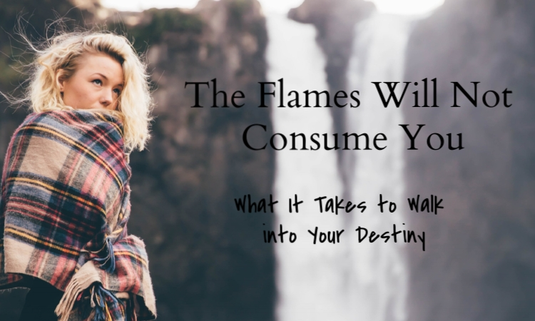 the flames will not consume you what it takes to walk into your destiny