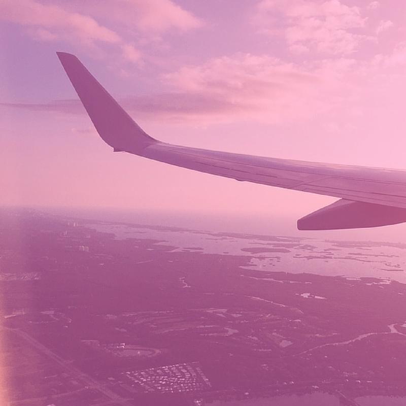 pink plane.png