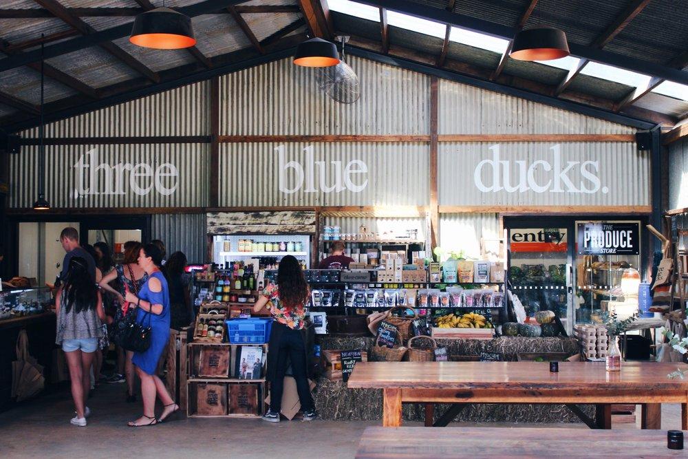 Three Blue Ducks at The Farm