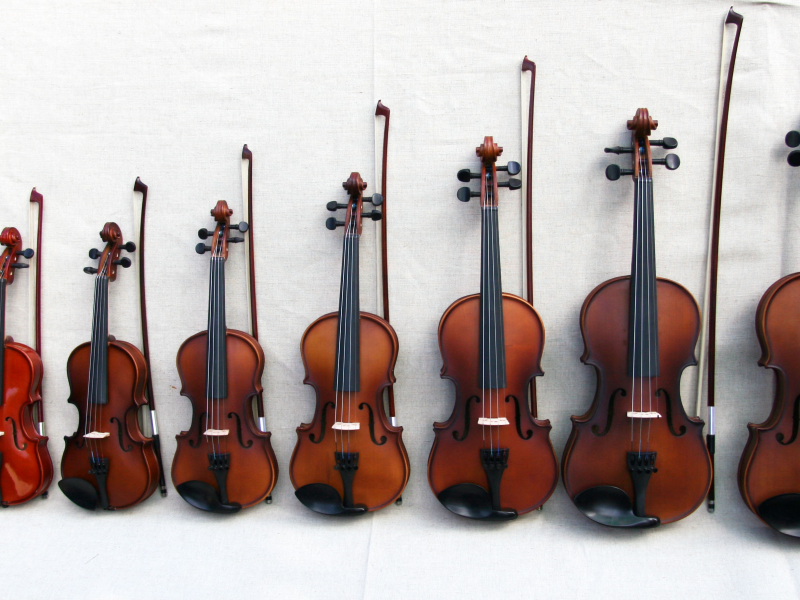 Luckily, violins come in quite an assortment of different sizes. Pictured are 1/8 sized violins, all the way up to full-sized.