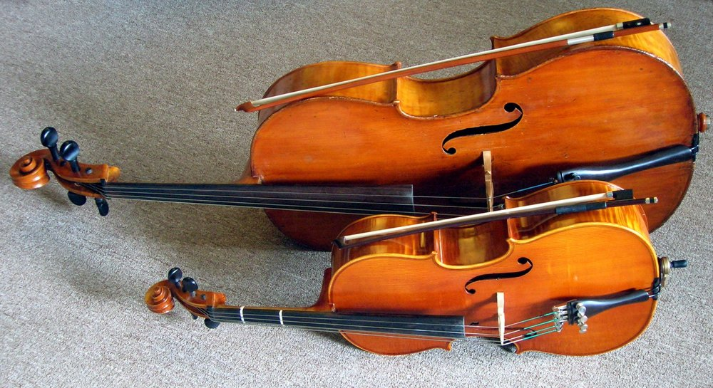 Cellos have different sizes too! Here is a 1/8-sized cello compared to a full-sized.