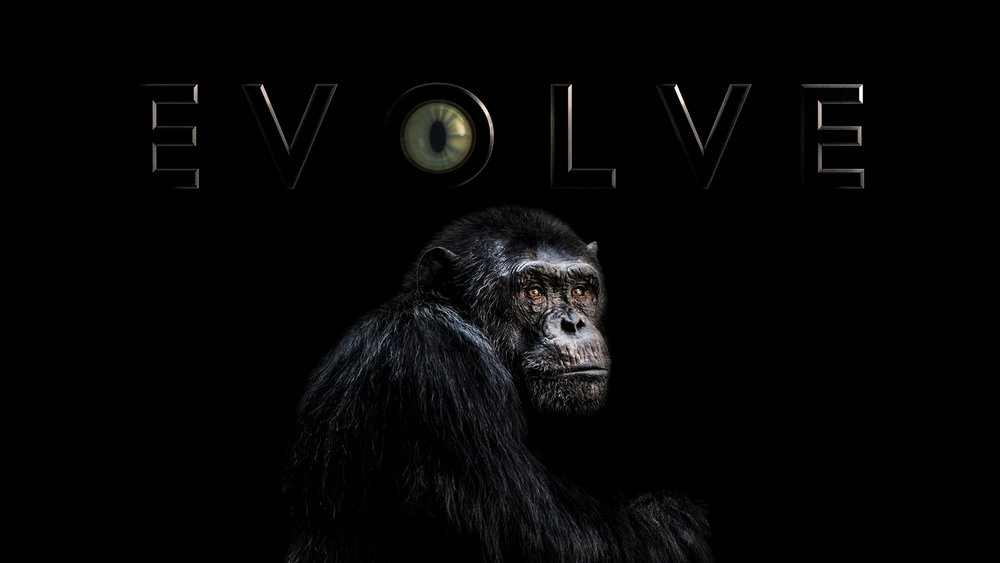 Evolve<br><br>The History Channel<br><i>2008 — 1 Season, 13 episodes</i>