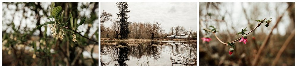 Brittingham_Photography_Orting_Natural_Light_Photographer_Nisqually_Wildlife_Preserve_Olympia_0016.jpg