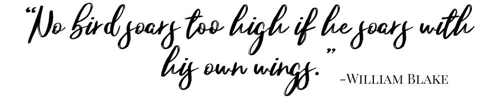no birds soars too high william blake.jpg