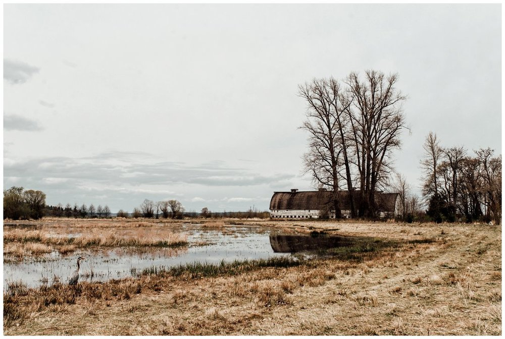 Brittingham_Photography_Orting_Natural_Light_Photographer_Nisqually_Wildlife_Preserve_Olympia_0042.jpg