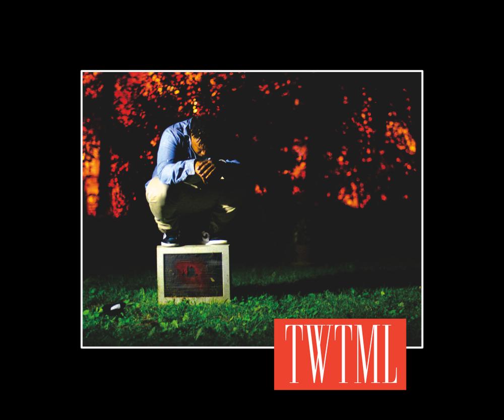 TWTMLEX1.png