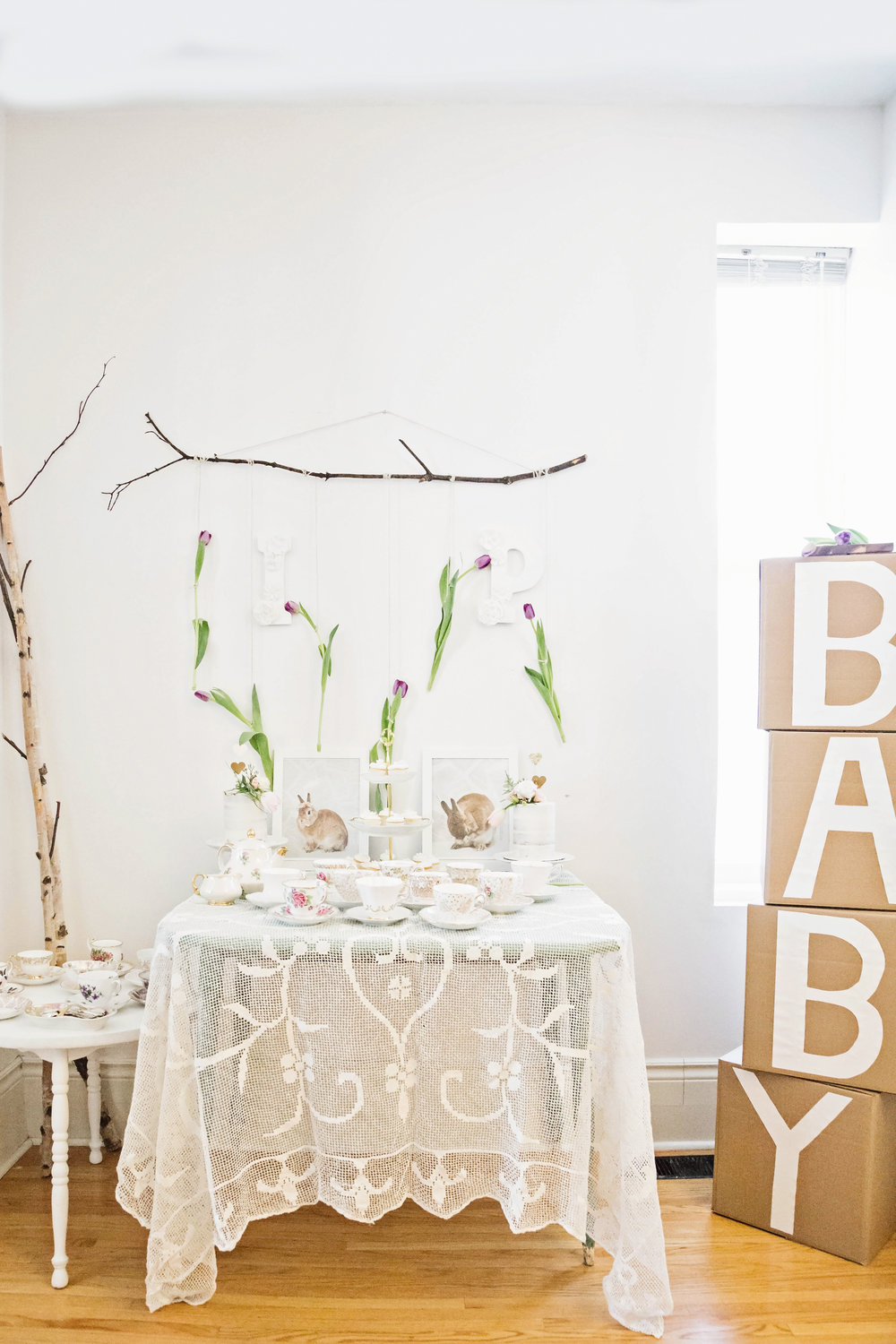 toronto-branding-photographer-baby-shower-ideas-15.jpg