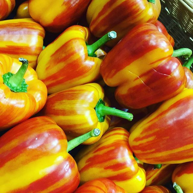 Saw these amazing 😋 #bellpeppers at the Western Foodservice and Hospitality Expo great product by @melissasproduce