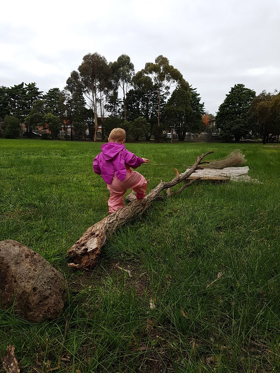 Branches, logs and rocks are perfect for balancing.