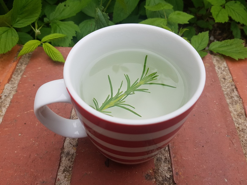 """Rosemary tea"""