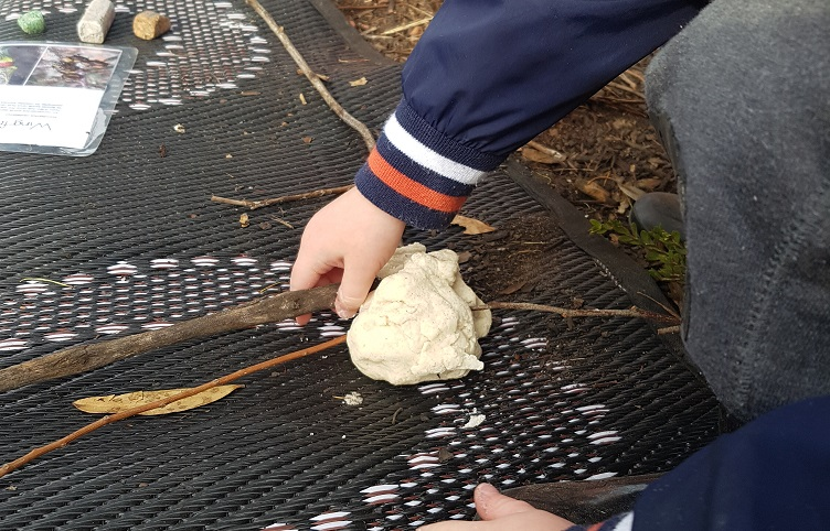 "Even big sticks can be used to make ""Echidnas"""