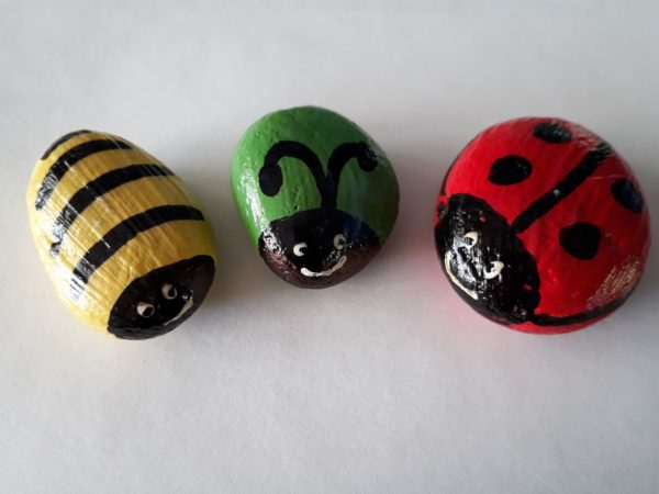 pebble_bugs_design-600x450.jpg