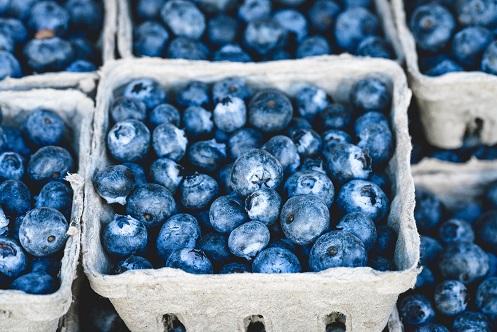 cropped blueberries.jpg