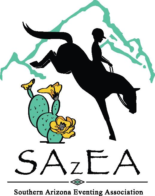 SAzEA Logo Color_No Border.png