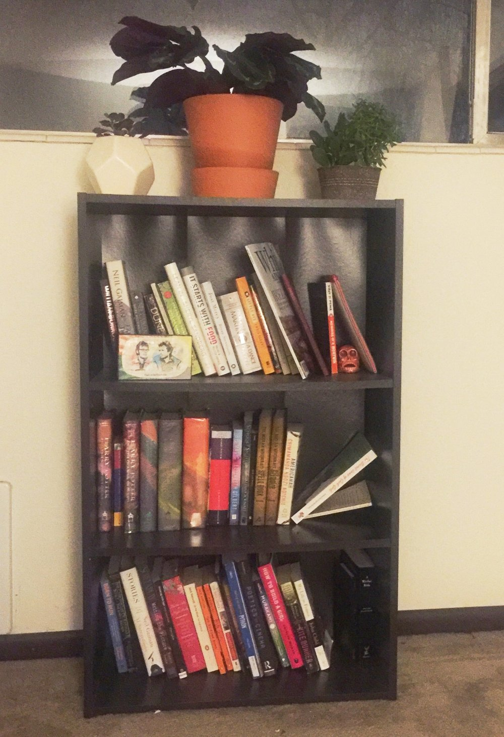 My Current bookshelf. My plants from L-R. Peter, Freya, Orion & Aurelia.