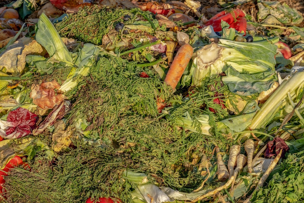 Up to 60% of feed and food is wasted -