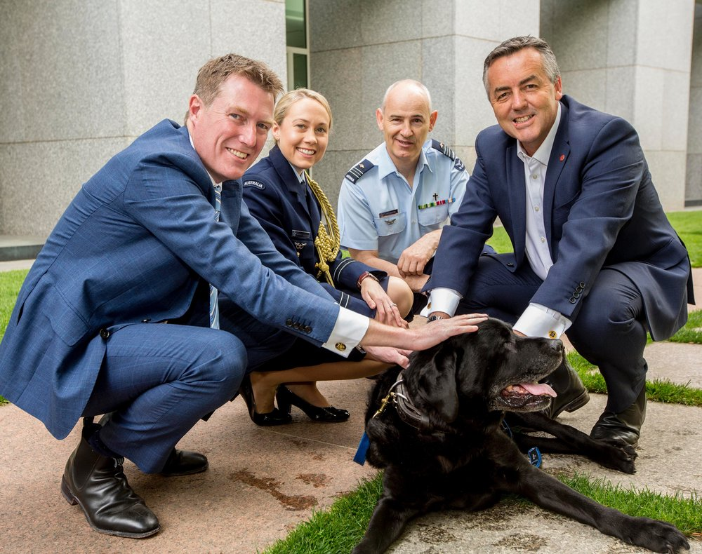 MHR Christian Porter, FLTLT Sharne Kinleyside, Air Force Chaplain Col Barwise and Minister for Defence Personnel Darren Chester MP pictured with explosive detection dog Tana. Tana, a black Labrador having served with the Australian Army for 4 years in Afghanistan is now an assistance dog under training with Young Diggers