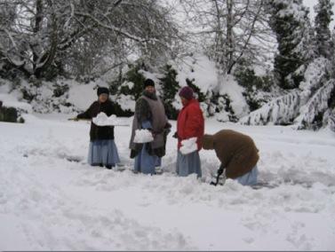 garden-snow-photo.jpg