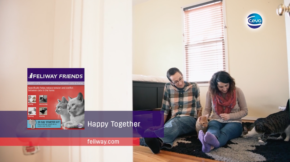 Feliway Friends - advertisement.png