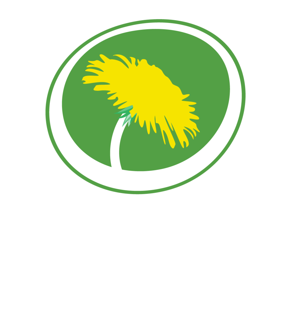 MP_logo_centrerad_neg.png
