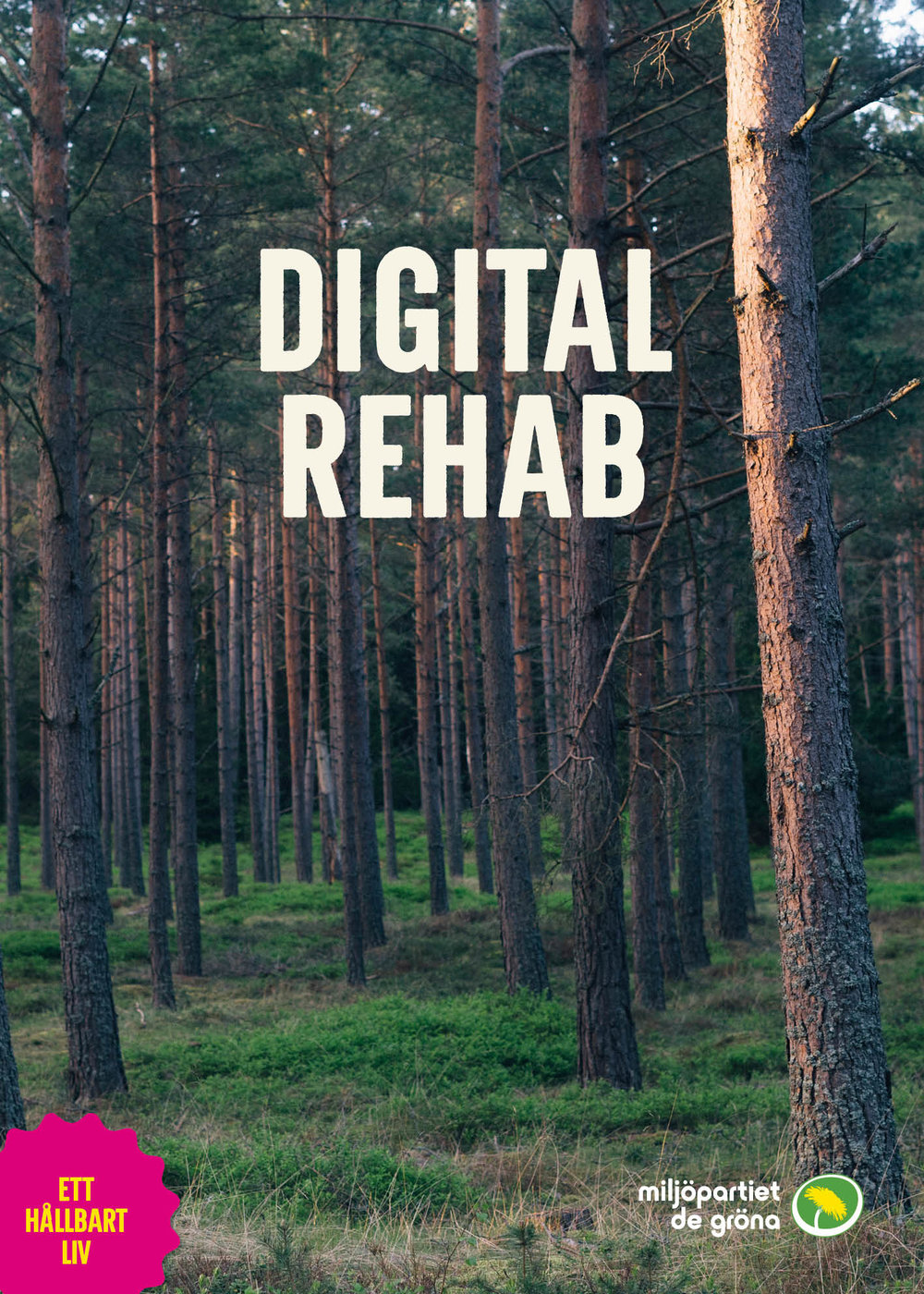 Digital Rehab_Print_KR.jpg
